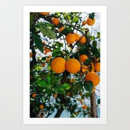 Amalfi Coast Oranges III Art Print