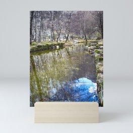 River Reflections - Colorful Mini Art Print