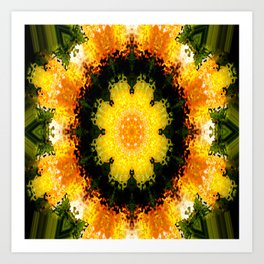 Flowering Spring... Art Print