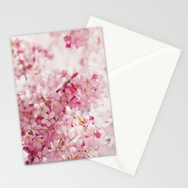 PINK AND WHITE CHERRY BLOSSOM Stationery Cards