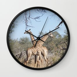 Two Giraffe in the Kruger National Park Wall Clock