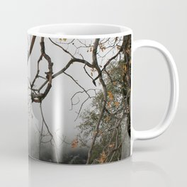 San Bernardino National Forest Coffee Mug