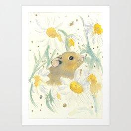 Daisy Day Dreams Art Print