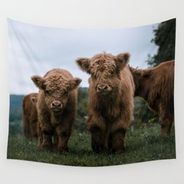 Scottish Highland Cattle Calves - Babies playing II Wall Tapestry