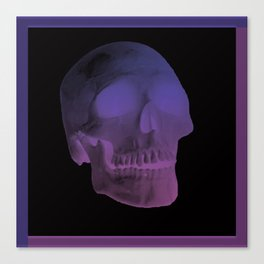 Pastel Skull Canvas Print