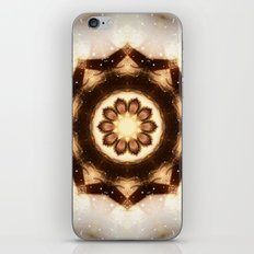 Protection iPhone & iPod Skin