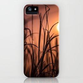 Nature Sunset iPhone Case