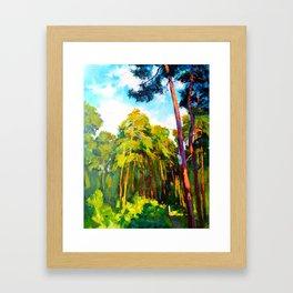 Whisper of pines Framed Art Print
