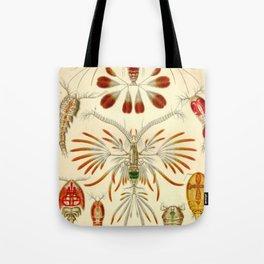 Artforms in Nature Beige Tote Bag