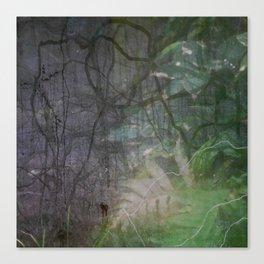 Blur #1 Canvas Print