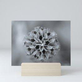 Moody Silver Black and White Flower Mini Art Print