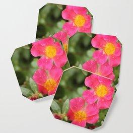 Neon Flowers Coaster