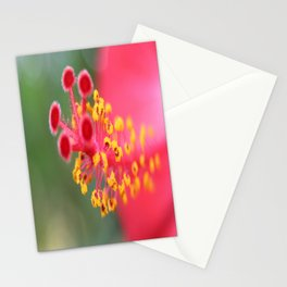 Macro Close Up Of Hibiscus Pollen  Stationery Cards
