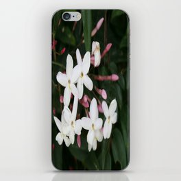 Delicate White Jasmine Blossom with Green Background iPhone Skin