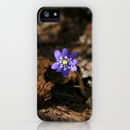 Hepatica nobilis in the humus iPhone Case