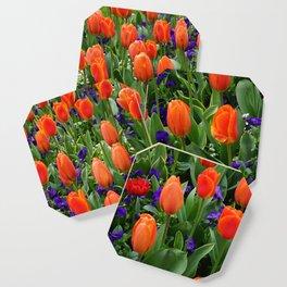 Tulip Field 2 Coaster