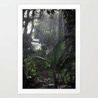 A forest Sunrise Art Print