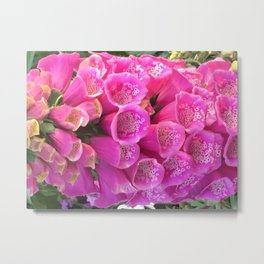 Botanical Florals Zencolor5 Metal Print