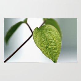 Raindrop Leaves Rug
