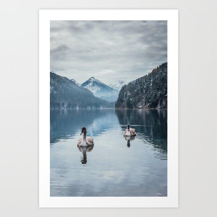 Couple of swans, romantic scene in bavarian alps Art Print