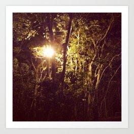 Lurking in the night Art Print