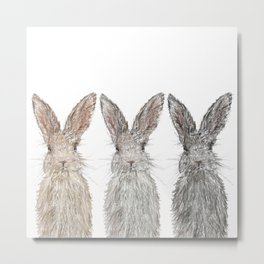 Triple Bunnies Metal Print