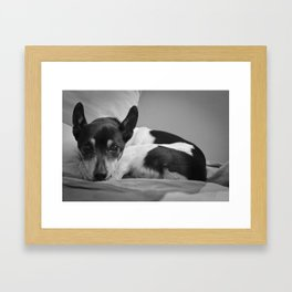 Mans Best Friend Framed Art Print
