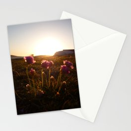 Flowers sunset 2 Stationery Cards