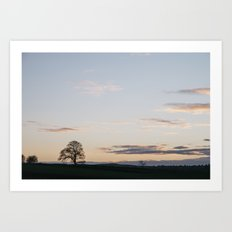 Tree on a hilltop above Matlock silhouetted at twilight. Derbyshire, UK. Art Print