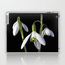 Spring Springs Eternal Laptop & iPad Skin