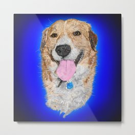 Dolly the Rescued Dog Metal Print