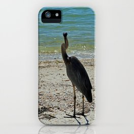 Glib Charmer iPhone Case