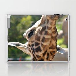 Baringo Giraffe Laptop & iPad Skin