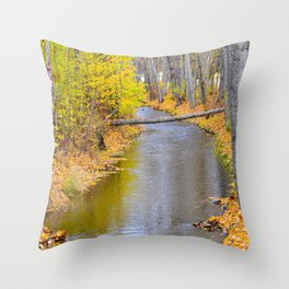 Autumn Stream II Throw Pillow