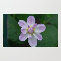 Porcelain Dahlia With Dewdrops Rug