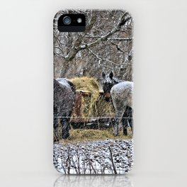 Feeding in The Snow iPhone Case