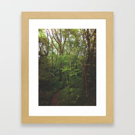 Wetlands Magic Framed Art Print