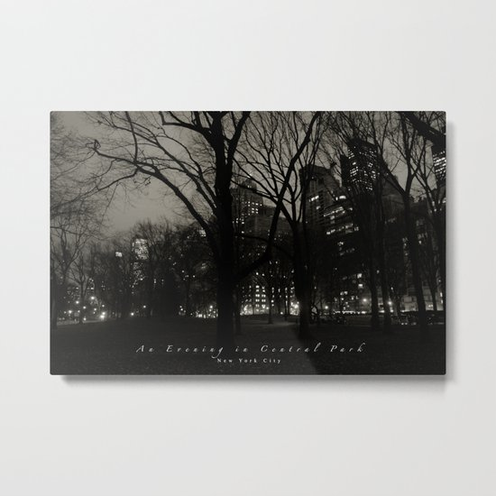 An Evening in Central Park, NYC Metal Print