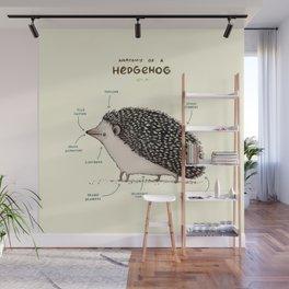 Anatomy of a Hedgehog Wall Mural