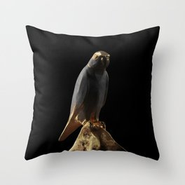 A birb named Gary 2 Throw Pillow