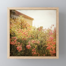 Cottage Garden Framed Mini Art Print