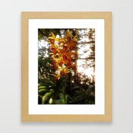 Dreamy Flower Framed Art Print