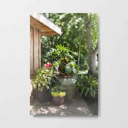 Container Gardening Done Right Metal Print
