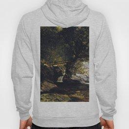 A Study Bash Bish Falls 1856 By David Johnson | Reproduction | Romanticism Landscape Painter Hoody