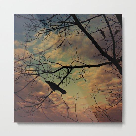 melancholy crow Metal Print