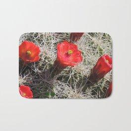 A Hedgehog Cactus Looks Sunward Bath Mat