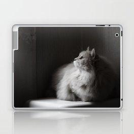 Siberian cat. Yet another rainy day. Laptop & iPad Skin