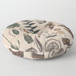 Botany Chart Floor Pillow