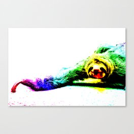 A Smiling Sloth II Canvas Print