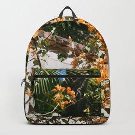 MXCO Backpack